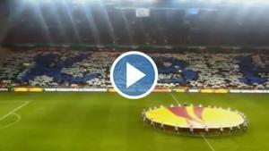 Video af tifoen hjemme mod VfB Stuttgart
